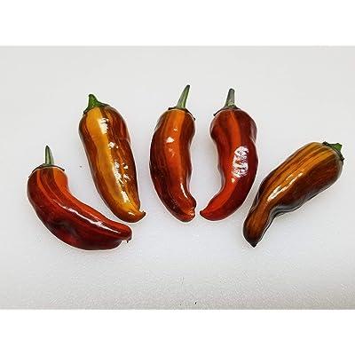 Fish Pepper Seeds-Original Heirloom 20+ Seeds : Garden & Outdoor