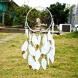SOLEDI Dreamcatcher Traumfänger Fensterhänger Indian Dream Fänger mit Tiermuster Weiß Golden Feder Wand hängende Dekoration Ornament Handwerk Geschenk