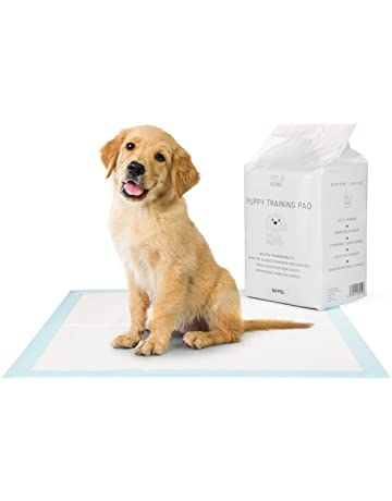 EVERANIMALS Empapadores para Perros - Toallitas de Entrenamiento para Mascotas- Máxima absorción - 50 Unidades