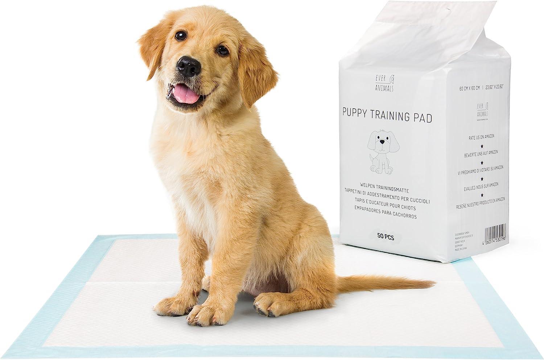 EVERANIMALS Empapadores Perros - Toallitas de adiestramiento Perros- Máxima absorción (100 Unidades)