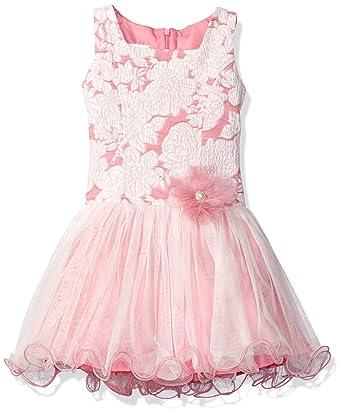 4c136e58aeb Bonnie Jean Little Girls' Sleeveless Jacquard Dropwaist to Tulle Skirt  Party Dress, Pink,