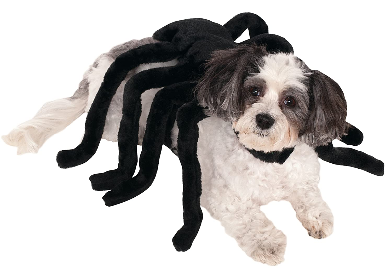 Rubie's Pet Spider Harness Costume Large Rubies Costume Company 580089 L