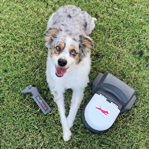 Swift Paws Home - Remote Control Capture The Flag Toy for Dogs, Lure Course, Fun Enrichment Agility Chase Game