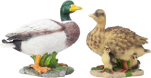 Familia de patos realista, a tamaño real. Diseño de pato y pata con patitos. Adornos de jardín: Amazon.es: Jardín