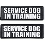 Hook and Loop Patches for Harness - Service Dog, Emotional Support, In Training, Service Dog In Training, and Therapy Dog Patches, by Industrial Puppy