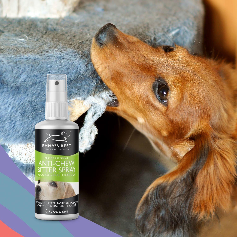 Amazon.com : Emmy\'s Best PRO Anti Chew Spray for Dogs & Puppies ...