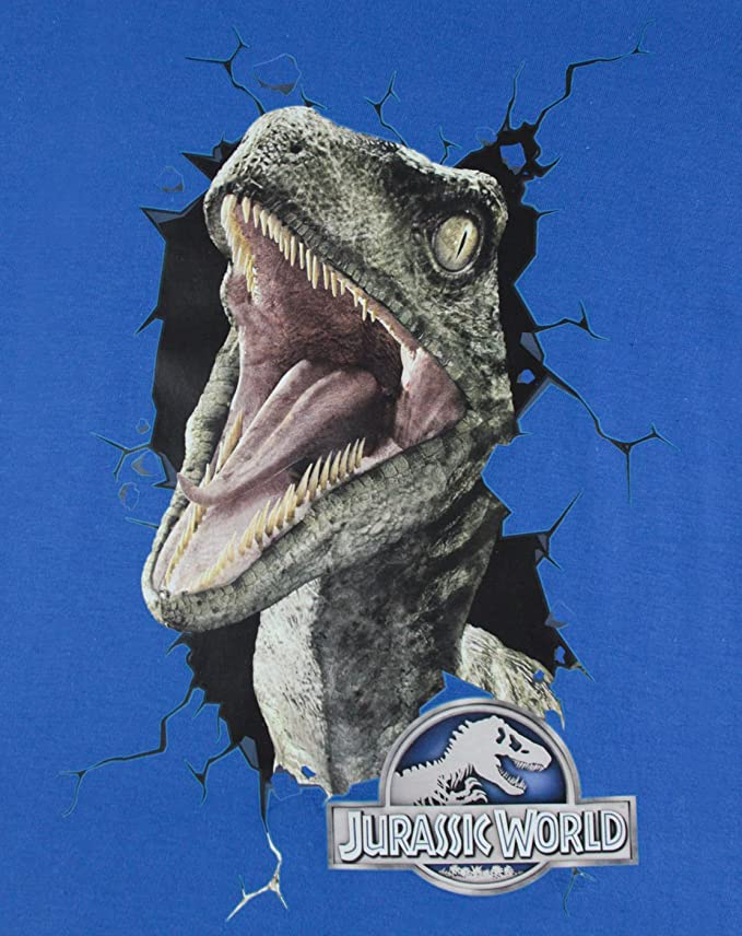 Amazon.com: Official Jurassic World Raptor Kids T-Shirt (3-4 Years): Clothing