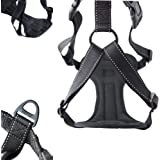 Mighty Paw Vehicle Safety Harness, Car Harness with Adjustable Straps and Soft Padding, Doubles as Dog Walking Harness with Front Range Leash Attachment