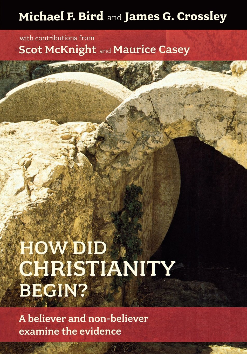 Read Online How Did Christianity Begin?: A Believer and Non-Believer Examine the Evidence ebook