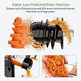 Slow Masticating Juicer, Homever Juicer Extractor