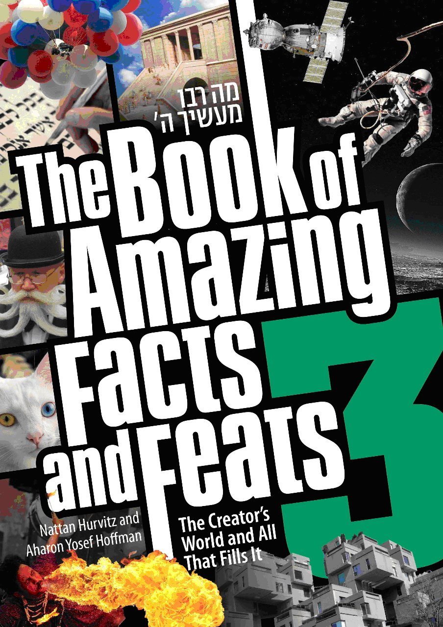 Download The Book of Amazing facts and Feats #3 ebook