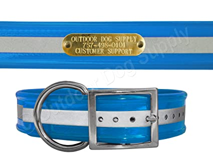hunting dog collars with name plate
