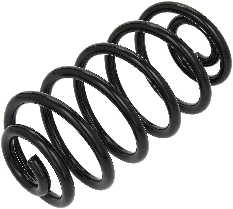 lesjofers 4263468 Coil Spring Rear