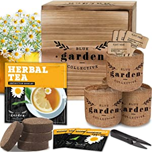 Tea Garden Kit, Seed Starter Kit and Indoor Gardening Kit with Herbal Seeds for Planting, Herb Garden Starter Kit, Herbal Tea Seeds for Tea Growing Kit or Indoor Herb Garden, Gardening Gifts for Women
