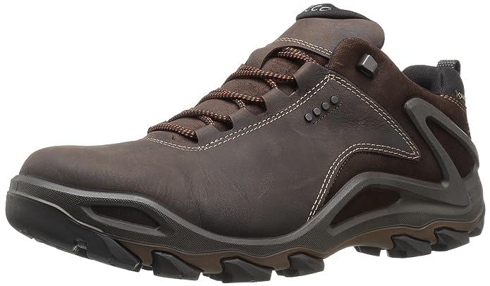 ae4c4ed72a Amazon.com   ECCO Men's Terra Evo Low Gore-Tex Backpacking Boot ...