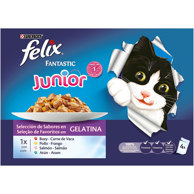 Purina Felix Fantastic comida para gato Junior Selecciones Favoritas 10 x [4 x 100 g]: Amazon.es: Productos para mascotas