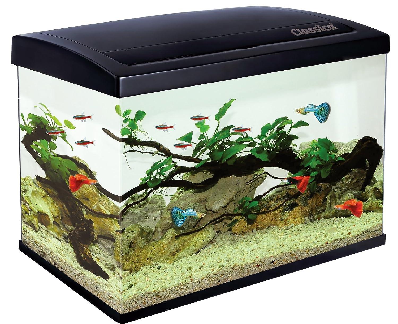 Classica Eco 45 - Acuario de 45 l con luz LED, filtro y calentador para peces marinos o tropicales: Amazon.es: Productos para mascotas