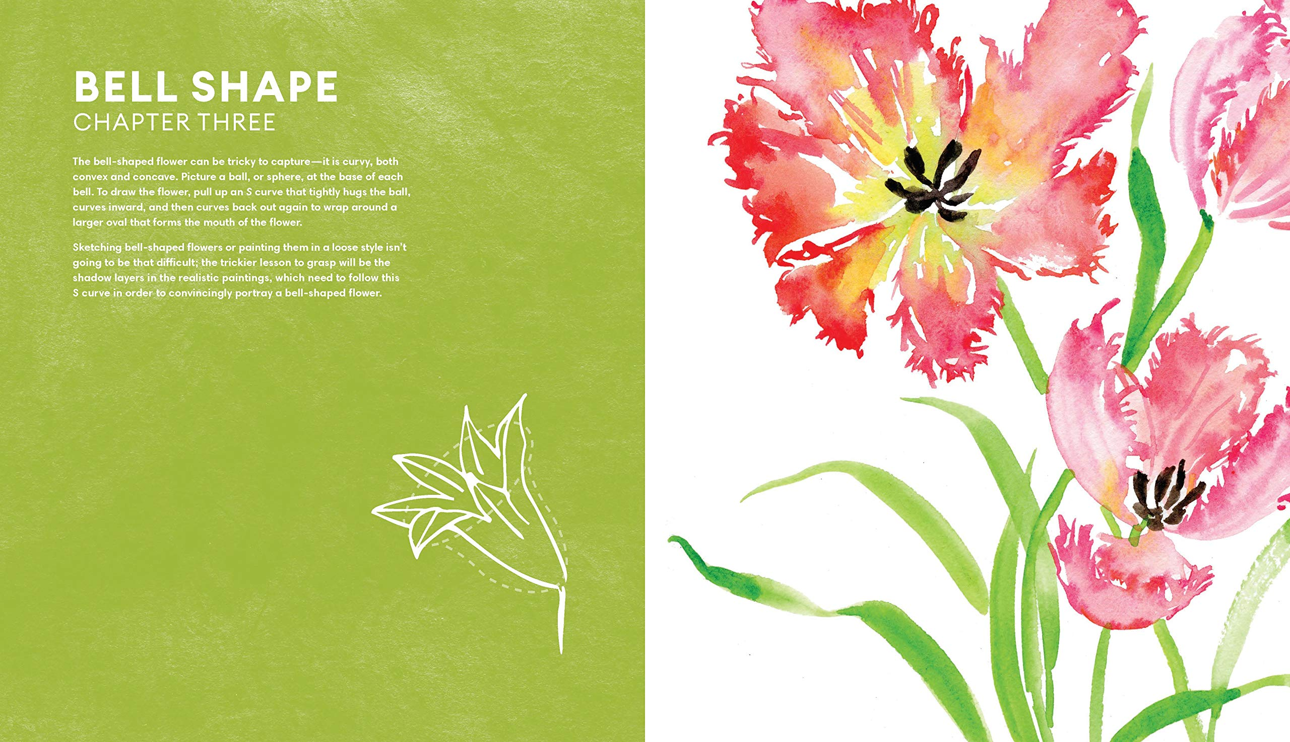 7df49e6c4216a Amazon.com: Everyday Watercolor Flowers: A Modern Guide to Painting Blooms,  Leaves, and Stems Step by Step (9780399582219): Jenna Rainey: Books