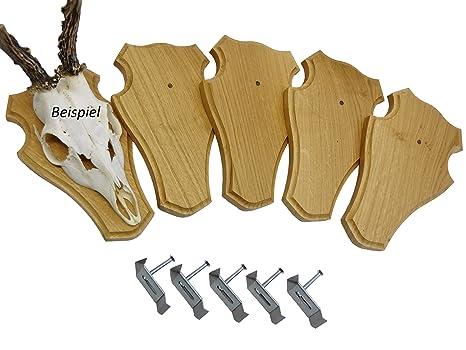5/pieza Trofeos carteles roble oscuro con 5/unidades geh/örn grapas en Juego