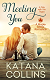 Meeting You: A Day with the Tripps (Maple Grove Romance Book 0)