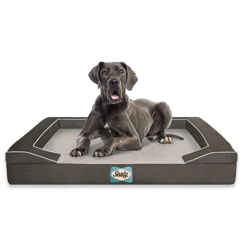 Sealy Lux Quad Capa Cama ortopédica para Perros con ...