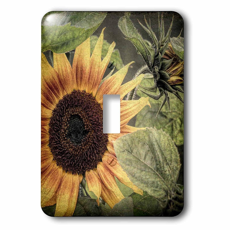 3drose Danita Delimont – 花 – 花 アメリカ 1、アラスカ州 B07BHKMCZV、Chena Hot Springs。Close up of sunflower plant。 – 照明スイッチカバー – シングルトグルスイッチ(LSP 278377_ 1 ) B07BHKMCZV, えにし屋:e12acae2 --- bistrobla.se