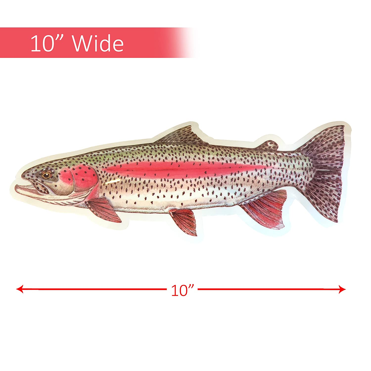 Amazon.com: Big Brown Trout Decal - Jeff Currier Fish Decal ...