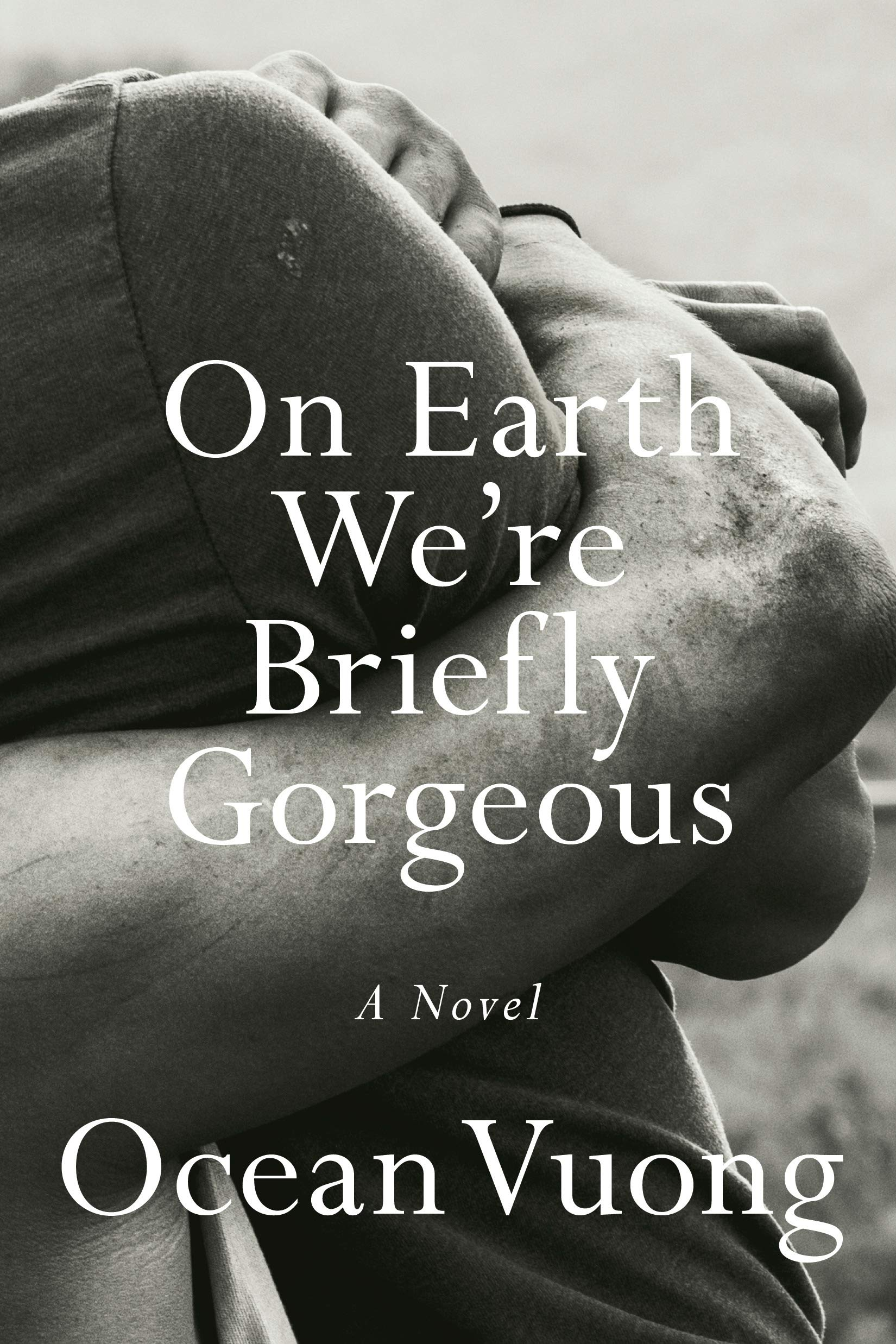 Earth Were Briefly Gorgeous Novel product image