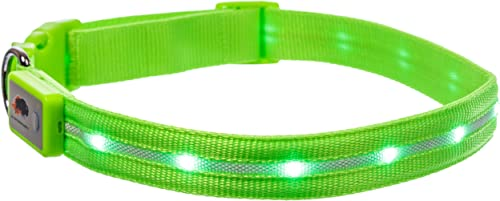 Blazin'-Safety-LED-Dog-Collar-USB-Rechargeable-with-Water-Resistant-Flashing-Light
