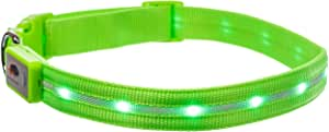 Blazin' Safety LED Dog Collar – USB Rechargeable with Water Resistant Flashing Light