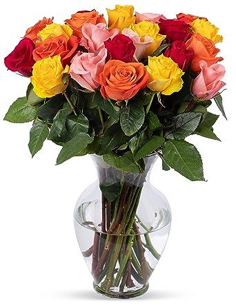 Amazon Com Benchmark Bouquets 2 Dozen Rainbow Roses With Vase