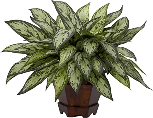 Nearly Natural 6694-S2 Silver Queen Decorative Silk Plant Green Set of 2