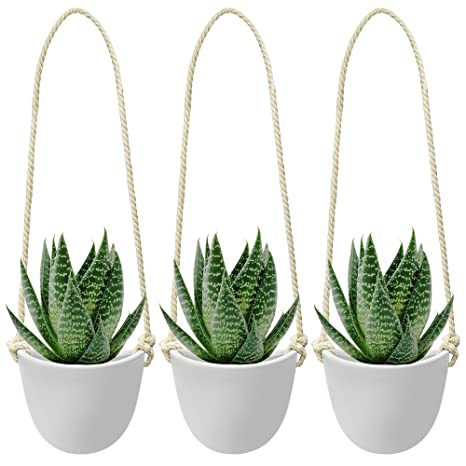 Amazon.com: Nellam Ceramic Hanging Planters - Modern White Porcelain on modern steps, modern urns, modern plates, contemporary planters, modern design, modern arbors, outdoor planters, modern columns, modern hammocks, modern retaining walls, large commercial planters, modern frames, modern figurines, modern architects, modern birdhouses, modern pedestals, modern slaves, large planters, modern tubs, modern walkways, fiberglass planters, modern bird baths,