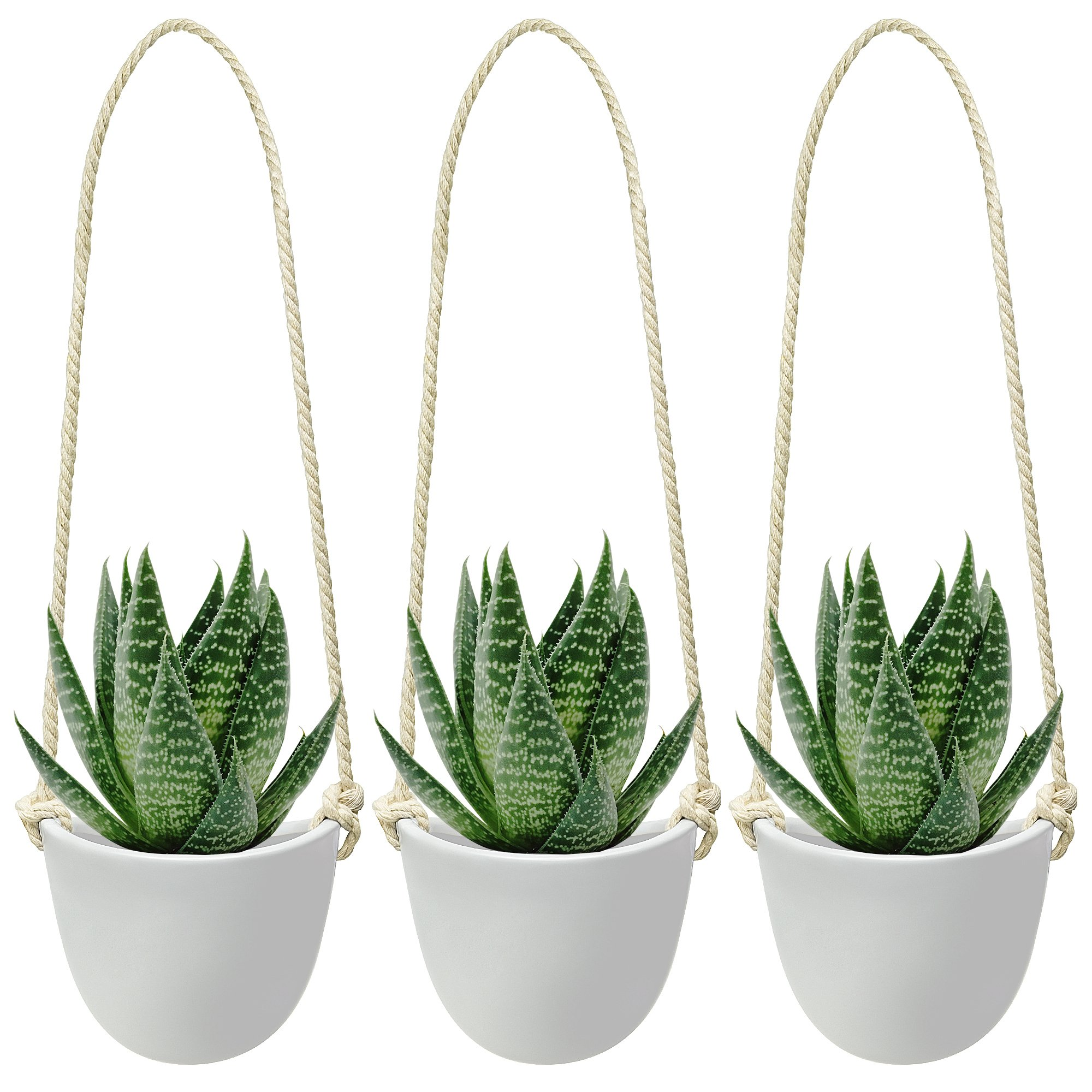 Nellam Ceramic Hanging Planters - Modern White Porcelain Containers - 3 pcs Decorative Pots for Indoor & Outdoor Use - Wall Decor Vase for Garden Flowers, Herbs, Plants and Succulents by Nellam