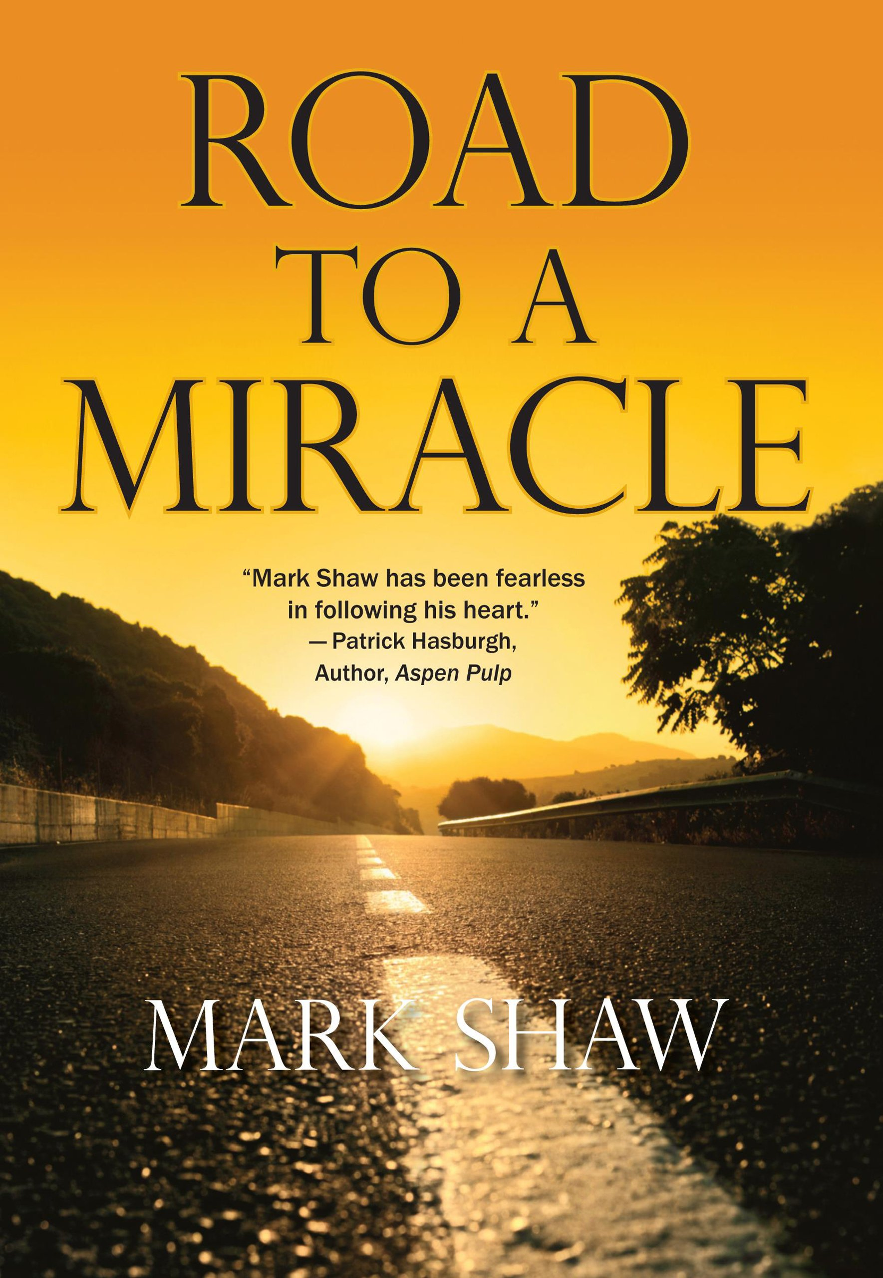 Read Online Road to a Miracle pdf epub