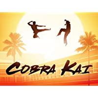 Deals on Cobra Kai: Season 1 HD Digital