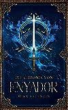 Die Chronik von Enyador (Enyador-Saga)