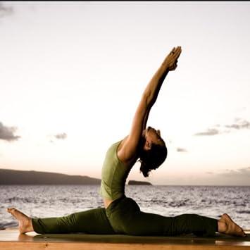 Amazon.com: Ashtanga Yoga: Appstore for Android