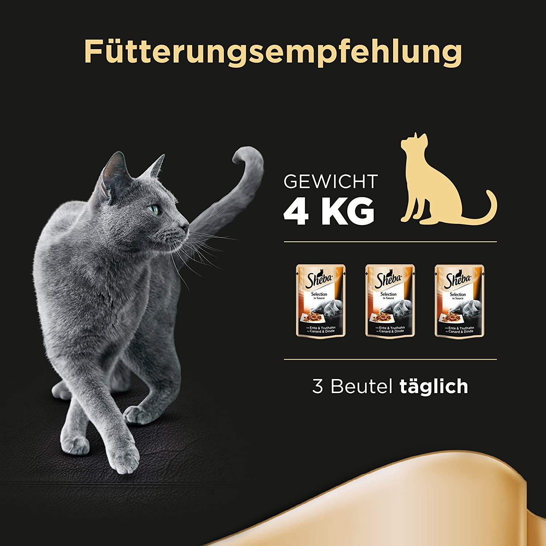 Sheba Comida para Gatos selección de Alimentos húmedos en Salsa para Gatos Adultos, con Pato y Pavo en Salsa (12x85 g): Amazon.es: Productos para mascotas