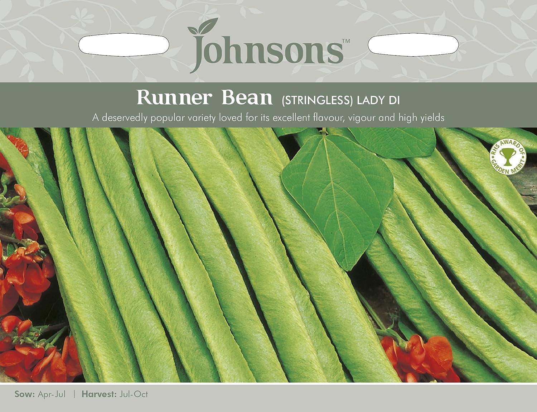 Johnsons UK/JO/PB Runner Bean Lady Di (Stringless) Johnsons Seeds
