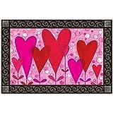 """Heart Flowers Doormat Valentine's Day Indoor Outdoor MatMates 18"""" x 30"""""""
