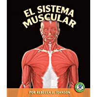 El Sistema Muscular/the Muscular System (Libros Sobre El Cuerpo Humano Para Mandrugadores/early Bird Body Systems) (Spanish Edition)