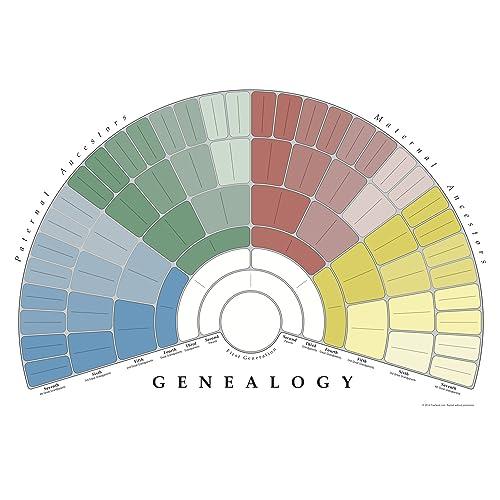 genealogy charts amazon com