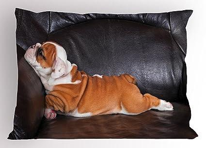 Ambesonne Cojín con diseño de bulldog inglés, color marrón y blanco