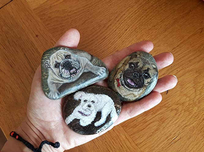 Christmas Rock Painting Images.Amazon Com Dog Pet Portraits On Beach Stone Hand Painted
