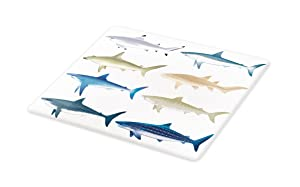 Lunarable Shark Cutting Board, Types of Angel Cow Hammerhead Sand Sharks Mammals Species Natural Nautical Graphic, Decorative Tempered Glass Cutting and Serving Board, Large Size, Multicolor