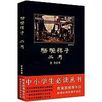 中小学生必读丛书:骆驼祥子