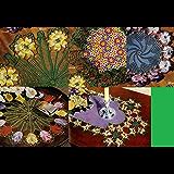 Patrones de Crochet de carpetita que paso floral para su hogar (Spanish Edition)