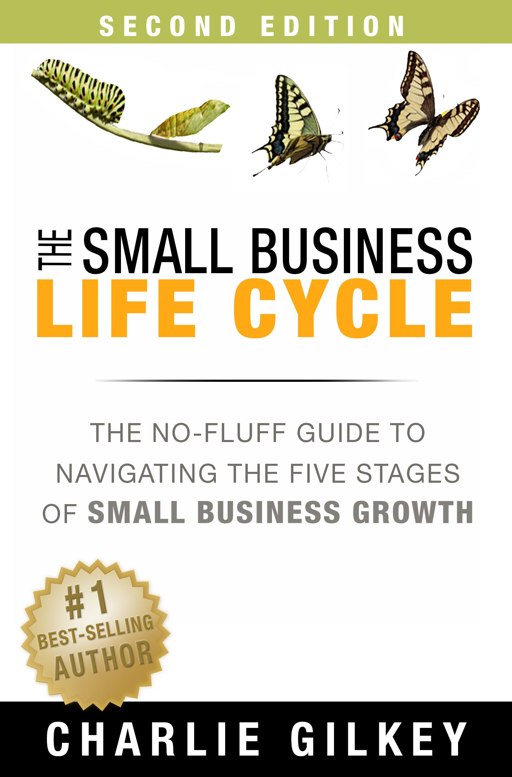 The Small Business Life Cycle: The No-Fluff Guide to Navigating the Five Stages of Small Business Growth