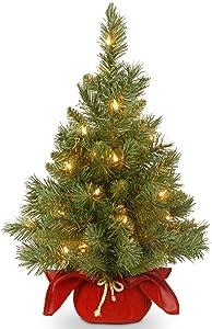 National Tree Company Pre-lit Artificial Mini Christmas Tree | Includes Small LED Lights, and Cloth Bag Base | Majestic Fir - 2 ft